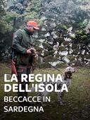 La regina dell'isola: beccacce in Sardegna