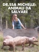 Dr.ssa Michelle: animali da salvare