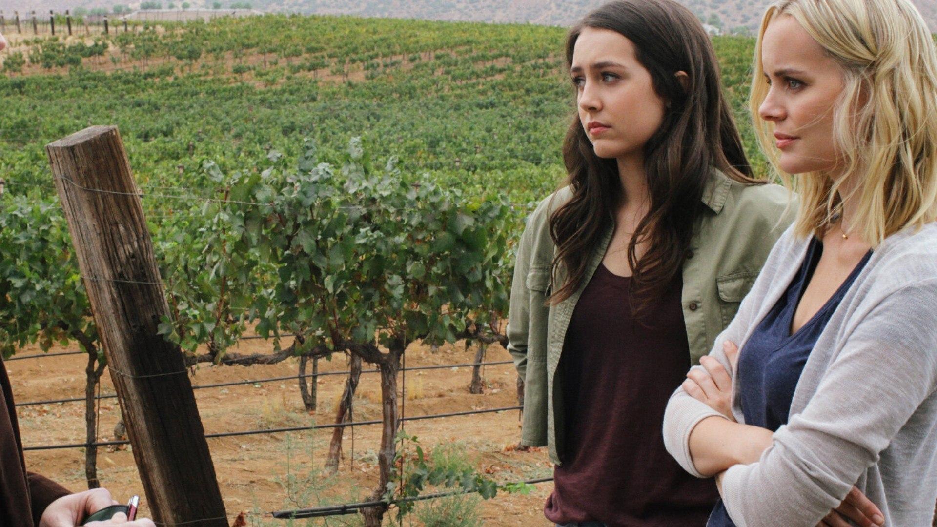 TV8 Delitto tra le vigne
