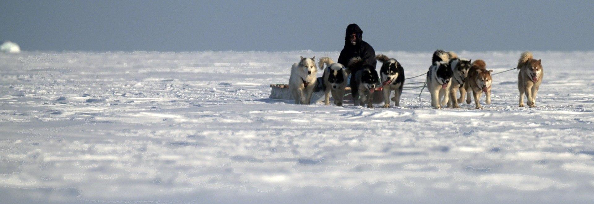 I segreti dell'Artide