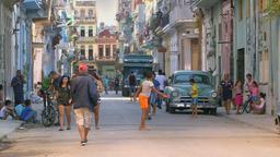 Tra gli orti urbani - Cuba
