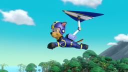 Cuccioli volanti