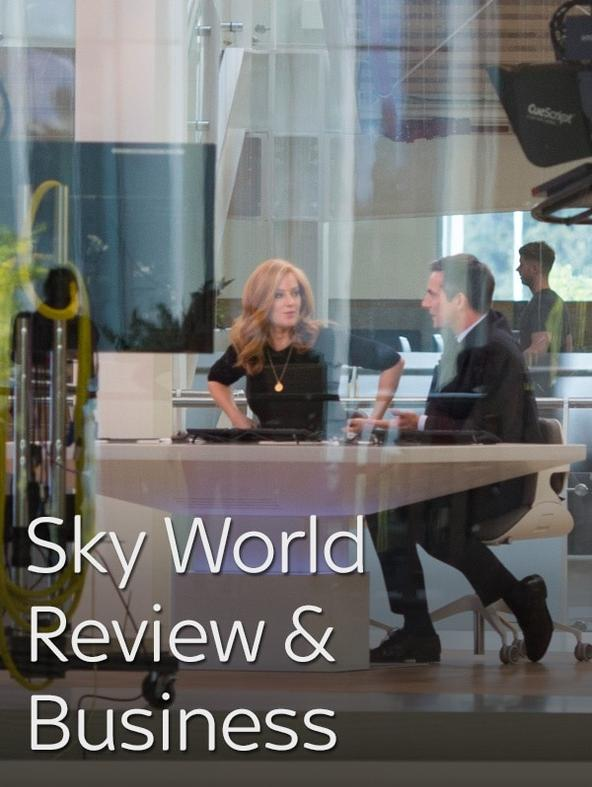 Sky World Review & Business Report
