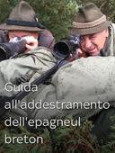 Guida all'addestramento dell'epagneul breton