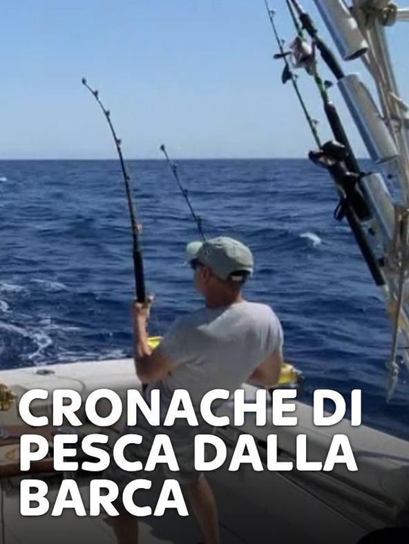 Cronache di pesca dalla barca 8
