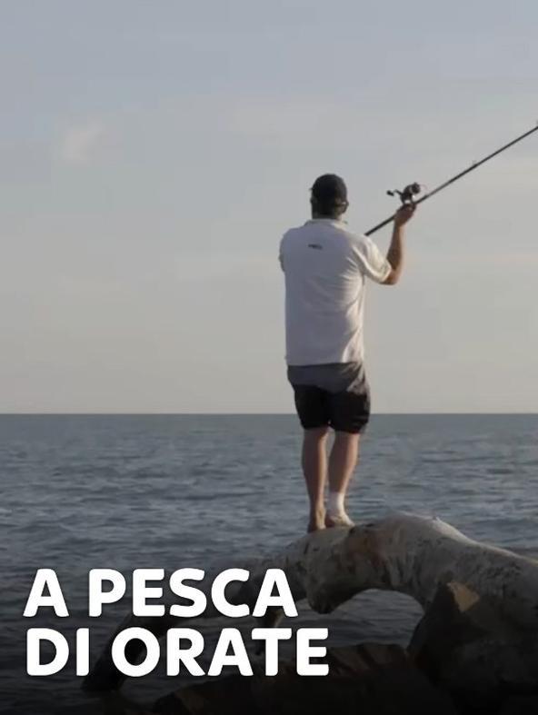 A pesca di orate 1