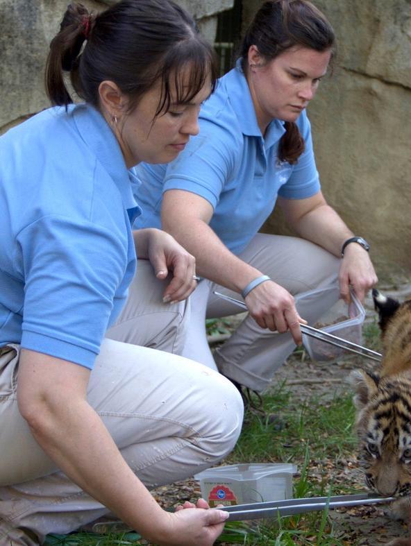 S1 Ep2 - I migliori veterinari di NG Wild