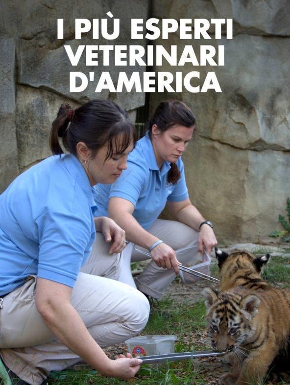 S1 Ep2 - I piu' esperti veterinari d'America