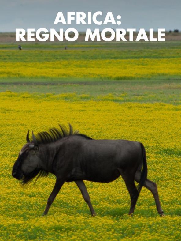 S1 Ep3 - Africa: regno mortale