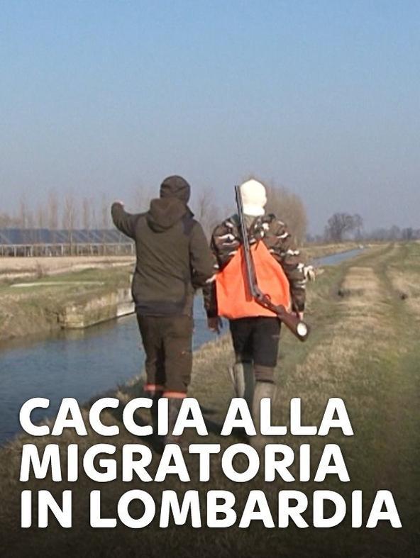 Caccia alla migratoria in Lombardia 1 - 1^TV