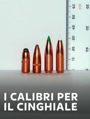 S1 Ep2 - I calibri per il cinghiale 1