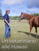 Un veterinario alle Hawaii