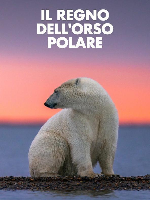 Il regno dell'orso polare