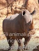 Gli animali più pericolosi: speciale Africa