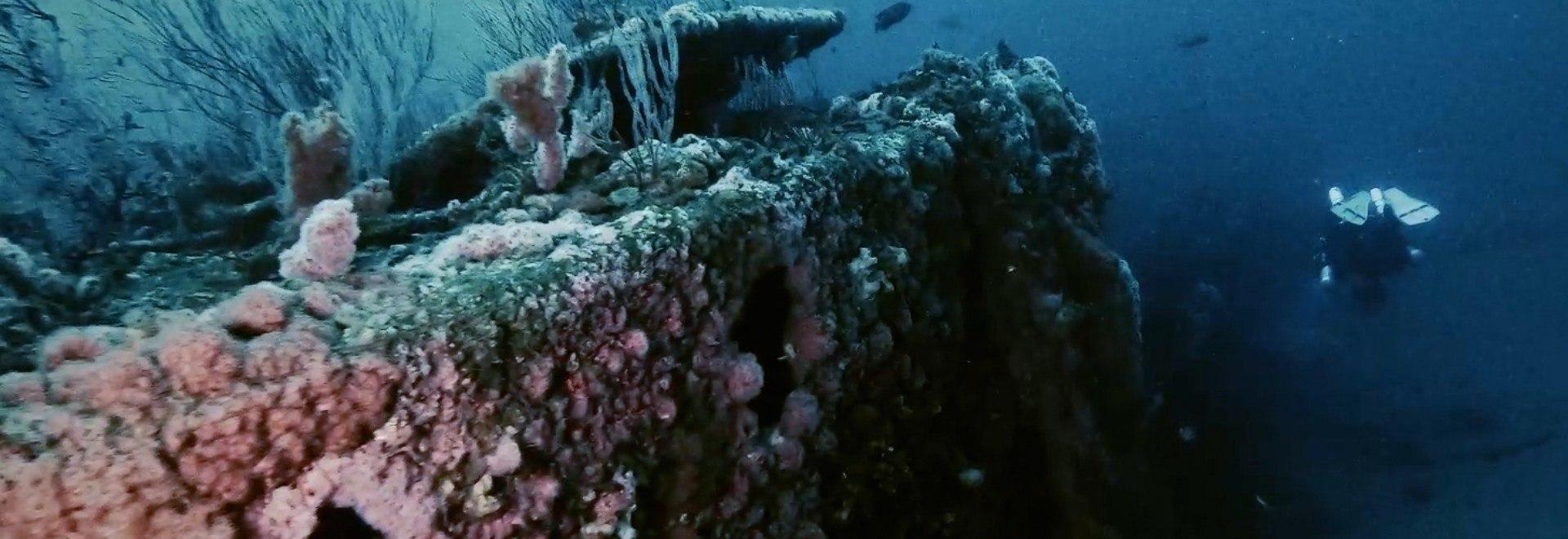 Oceani: i segreti degli abissi