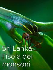S1 Ep2 - Sri Lanka: l'isola dei monsoni