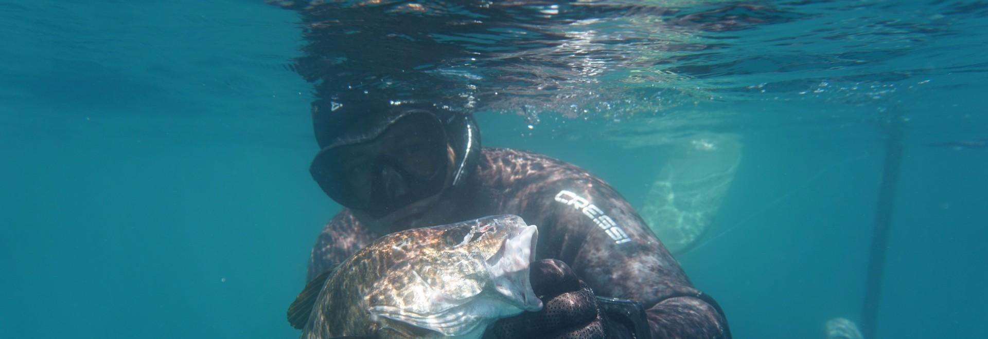L'abc della pesca in apnea