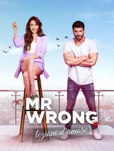 S1 Ep8 - Mr Wrong - Lezioni d'amore