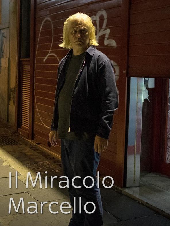 Il Miracolo - Marcello