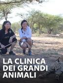 La clinica dei grandi animali
