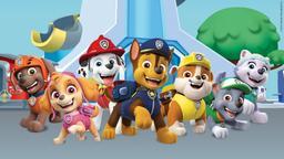 I super cuccioli: i cuccioli fermano un robot / I super cuccioli: I cuccioli e la cupola