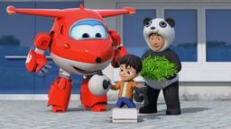 Cercasi panda