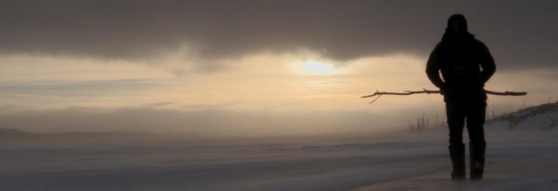 Freddo Artico