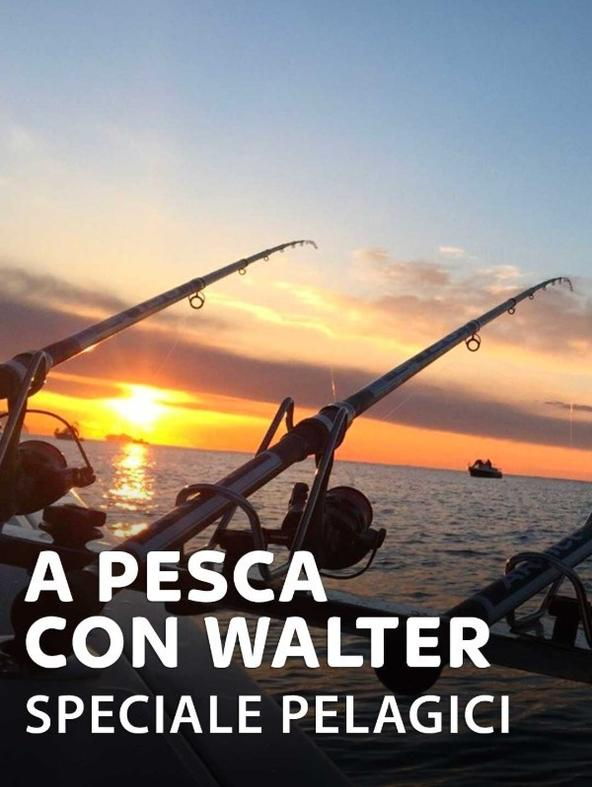 S1 Ep1 - A pesca con Walter - Speciale pelagici 1