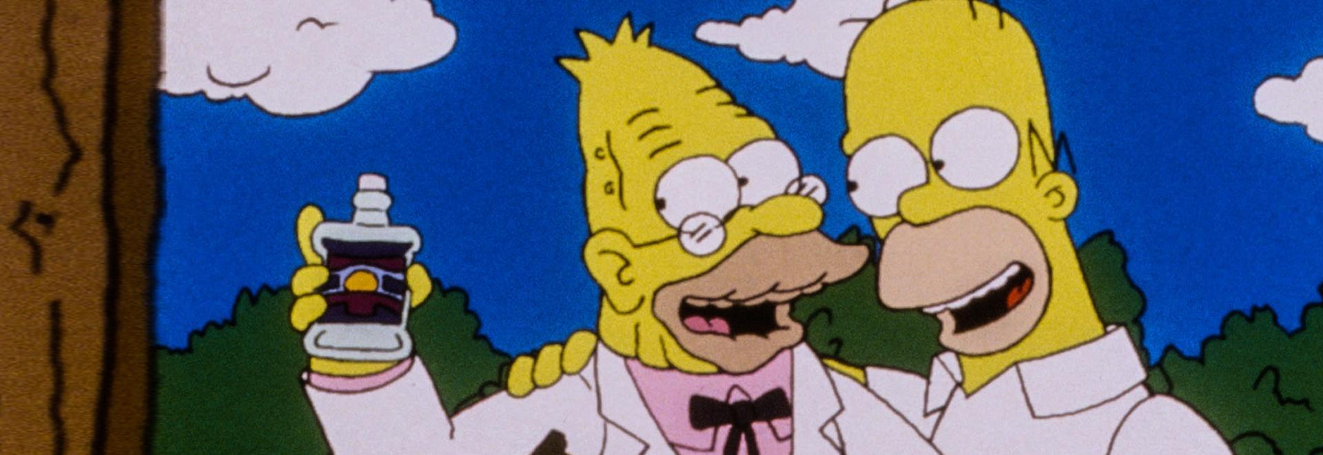 Homer il clown