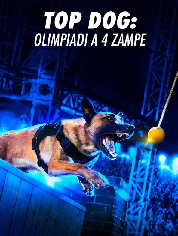 S1 Ep11 - Top Dog: Olimpiadi a 4 zampe