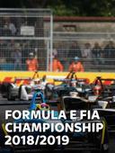 Formula E FIA Championship 2018/2019