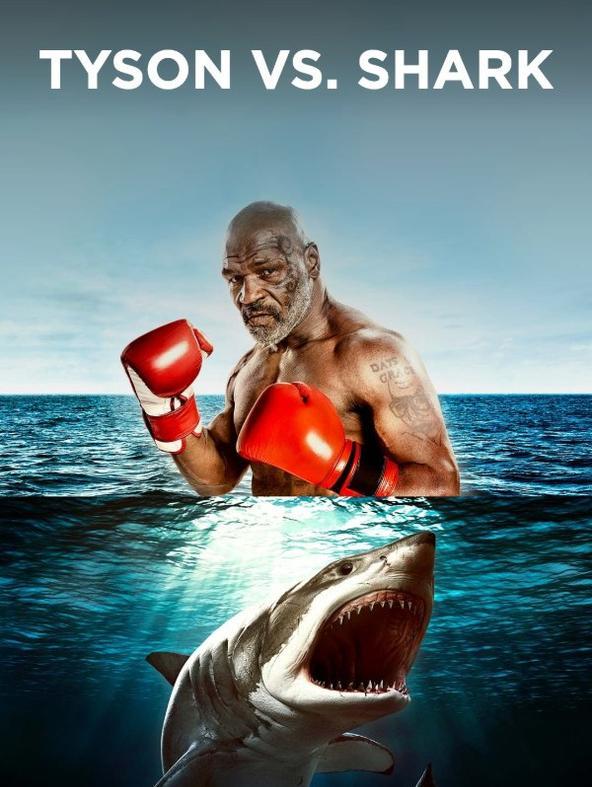 Tyson vs. Shark