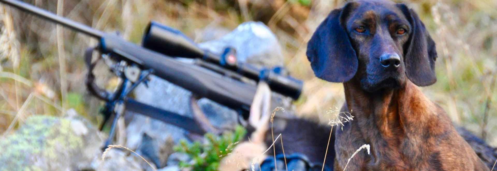 Speciale Argentina: l'ultimo Eldorado per la caccia. 2a parte