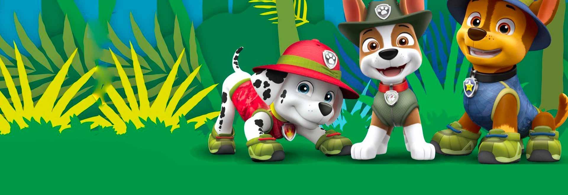 I cuccioli salvano Danny da un orso / I cuccioli salvano i tulipani del sindaco