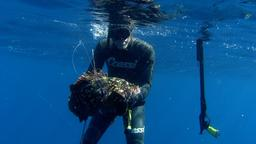 Dal Golfo del Leone al Mar Ionio