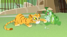 Sfida con la tigre