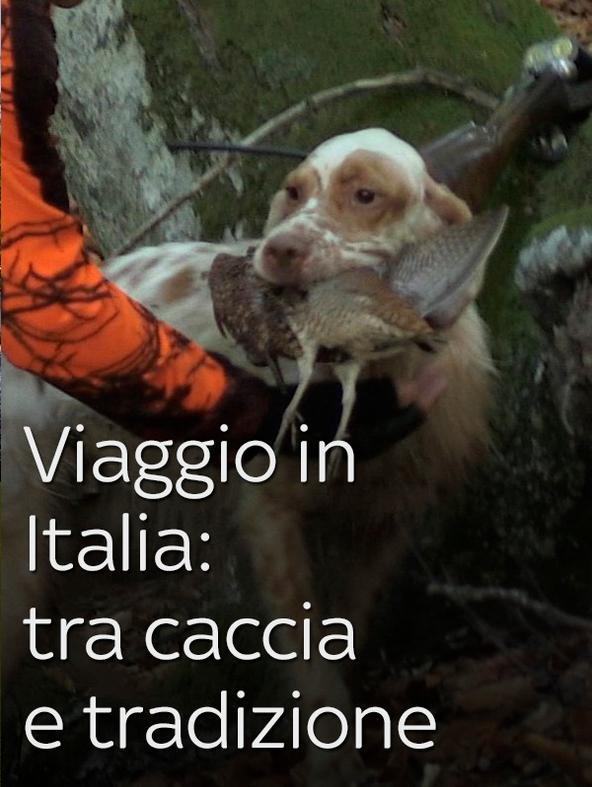 Viaggio in Italia: tra caccia e...