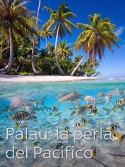 Palau: la perla del Pacifico