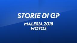 Malesia 2018. Moto3. Gara