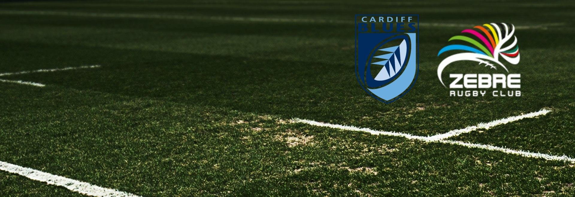 Cardiff Blues - Zebre