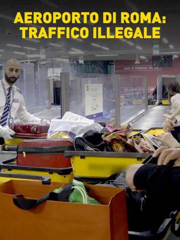 S8 Ep1 - Aeroporto di Roma: traffico illegale