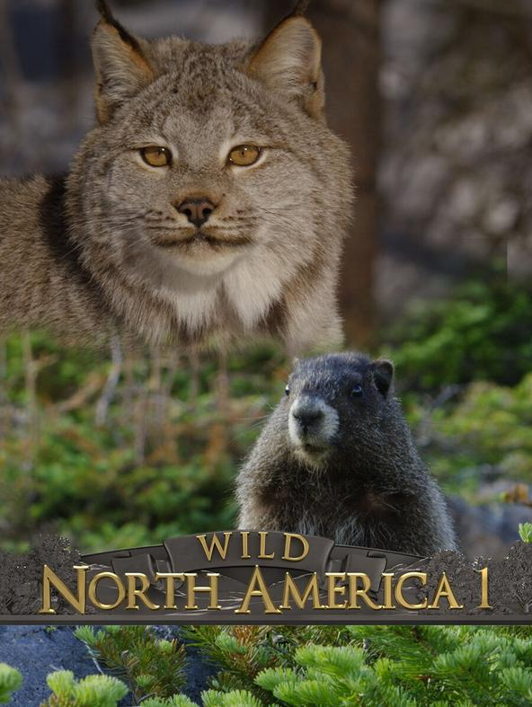 S1 Ep2 - Wild North America