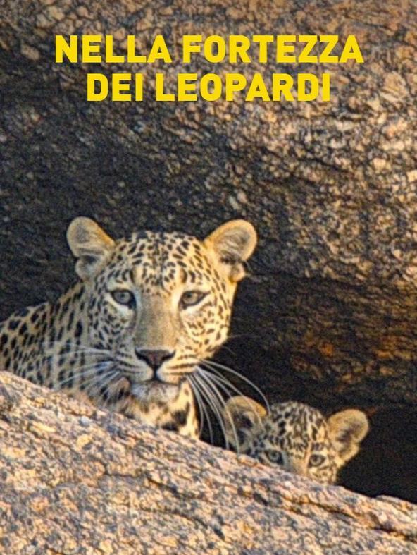 Nella fortezza dei leopardi