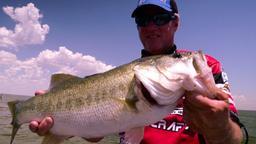 I monster bass dei laghi del Texas