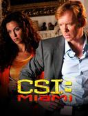 C.S.I. Miami