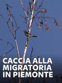 Caccia alla migratoria in Piemonte