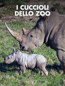 I cuccioli dello zoo