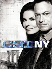 S9 Ep13 - CSI New York