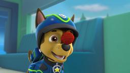 I cuccioli salvano la corsa all'oro / I cuccioli salvano il paw-patroller