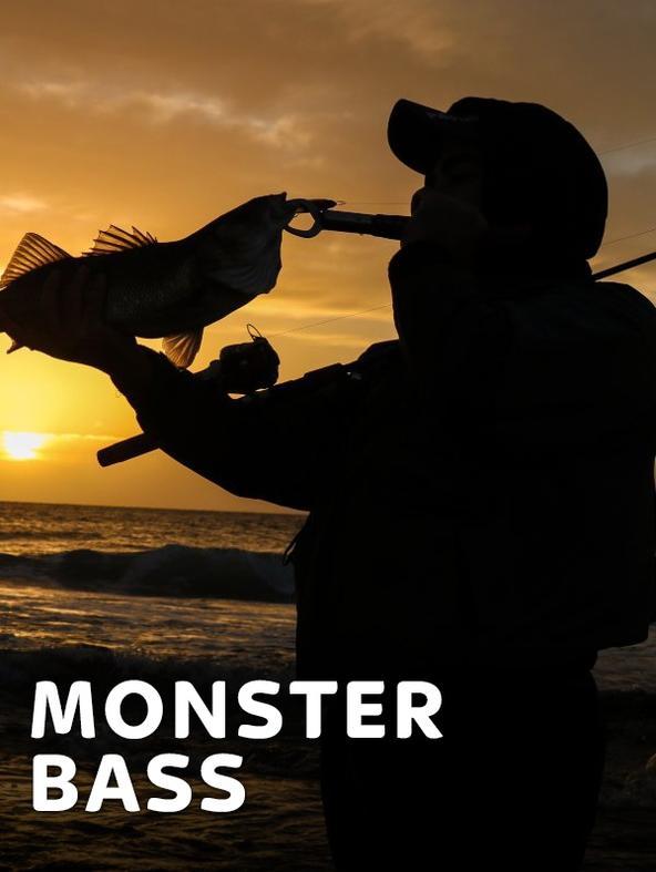 Monster Bass in acqua bassa